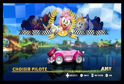 Sonic & Sega All Stars Racing (5)