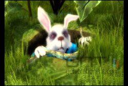 Alice au Pays des Merveilles (13)