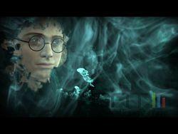Harry Potter Prince Sans Melé