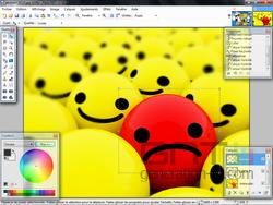 paintnet02