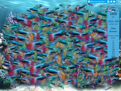 fishopera116