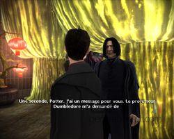 Harry Potter Prince Sans Melé (25)