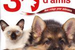 30 Millions d\\\'Amis : Mon refuge pour animaux - pochette