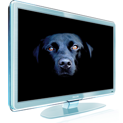 42PFL9803_LED_backlighting_dog