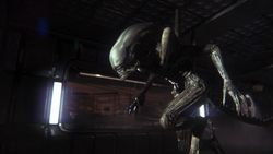 Alien Isolation - 6