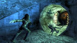 Aliens versus predator requiem image 4