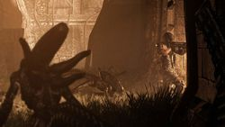 Aliens vs Predator - Image 14