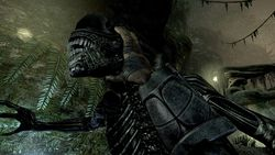 Aliens vs Predator - Image 24