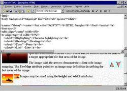 Ams HTML screen