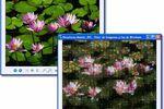 AndreaMosaic Portable : se lancer dans la transformation de photos en mosaïques