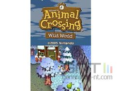Animal Crossing Wild World Sreenshot 1