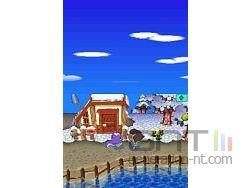 Animal Crossing Wild World Sreenshot 21