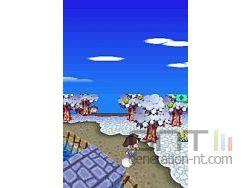 Animal Crossing Wild World Sreenshot 7