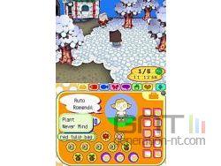 Animal Crossing Wild World Sreenshot 9