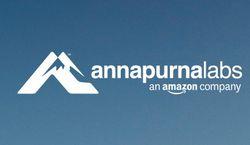 Annapurna Labs vignette