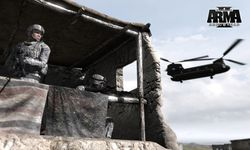 Arma 2 Operation Arrowhead (14)