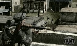 Arma 2 Operation Arrowhead (4)