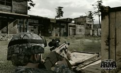 Arma 2 Operation Arrowhead (7)