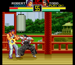 Art of fighting 1