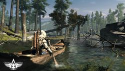 Assassin Creed 3 - 4