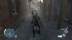 Assassin Creed III - 17