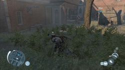 Assassin Creed III - 18