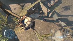 Assassin Creed III - 20