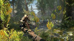 Assassin Creed III - 3