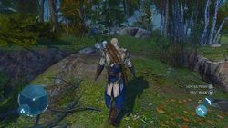 Assassin Creed III - 4