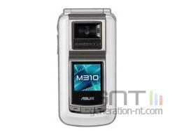 Asus m310 small