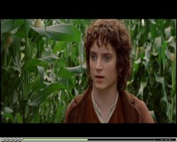 AVS DVD Player LOTR