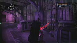 Batman Arkham Asylum (12)