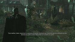 Batman Arkham Asylum (18)