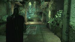 Batman Arkham Asylum (4)