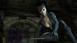 Batman Arkham City (12)