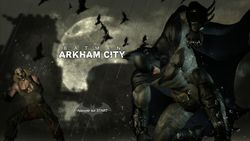 Batman Arkham City (18)