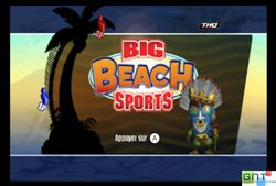 Big Beach Sports (24)