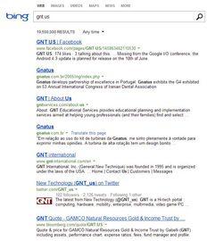 Bing-GNT