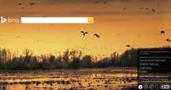Bing-Homepage