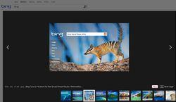 Bing-Pinterest
