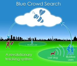 blue-crowd-search5
