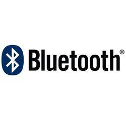 Bluetooth mini