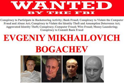 Bogachev-FBI