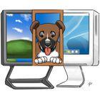 Bosco's Screen Share : inviter vos amis sur votre bureau