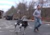 Boston Dynamics présente son chien robot Spot