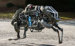 Boston_Dynamics_WildCat_b