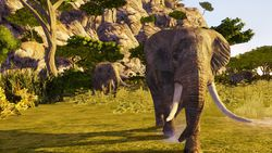 Cabela\'s Dangerous Hunts 2009 - Image 5
