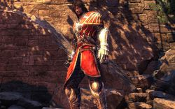 Castlevania : Lords of Shadow - 4