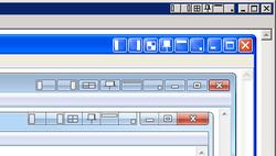 Chameleon Window Manager logo