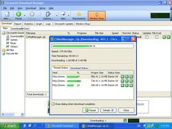 Chrysanth Download Manager 2